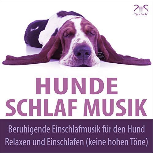 Wald der Träume – Entspannungsklänge für den Hund ohne hohe Frequenzen