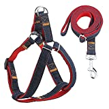 URPOWER Dog Leash Harness Adjustable & Durable Leash Set & Heavy Duty Denim Dog Leash Collar for Small, Medium and Large Dog, Perfect for Daily Training Walking Running (L(17'-27.5' Chest Girth))