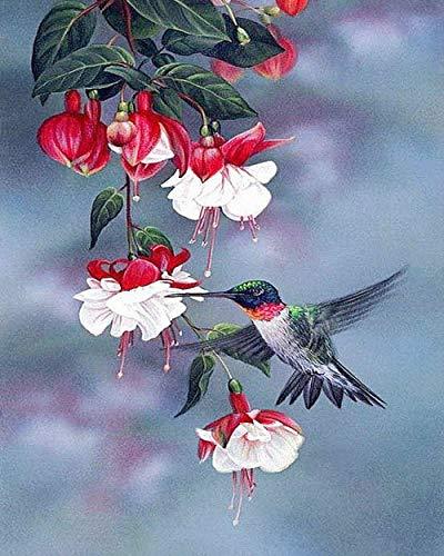 nanxiaotian 5D-Diamant-Gemälde zum Selbermachen, quadratische Strasssteine, Vogel-Blume, 40 x 50 cm, Kreuzstich-Set, Kristall-Stickerei, Heimdekoration
