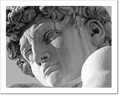 Barewalls Face of David Sculpture by Michelangelo, Florence, Italy Paper Print Wall Art (8in. x 10in.)