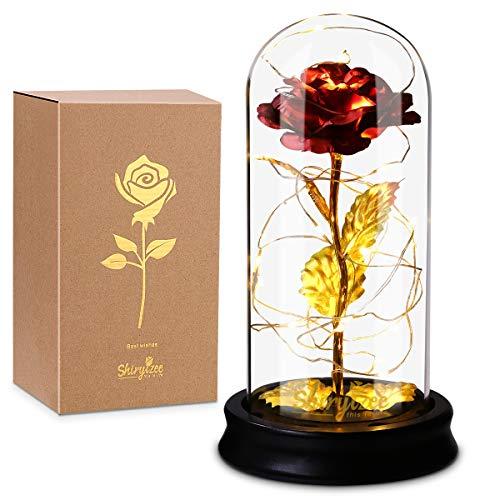Ewige Rose im Glas, Efanty Die Schöne und das Biest Rose mit LED-Licht in Glaskuppel Künstlich Rose Geschenk für Freundin Frau Valentinstag Muttertag Hochzeitstag Jahrestag Weihnachtstag