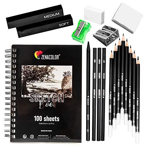 Kit Dibujo Completo - Principiante/Profesional - 19 accesorios: 8 Lapices, 3 lapiz carboncillo, 1 Grafito, 2 Barra Carboncillo, Cuaderno dibujo 100 págs - Regalo ideal para artistas de cualquier Nivel