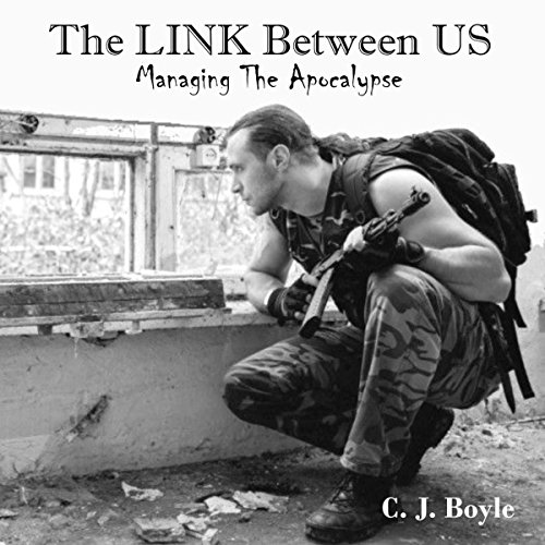 The Link Between Us audiobook cover art