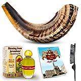 Shofar Horn Instrument – RAM Shofar Angels Musical Instrument – Horn Gift from Israel – Kosher Jewish...