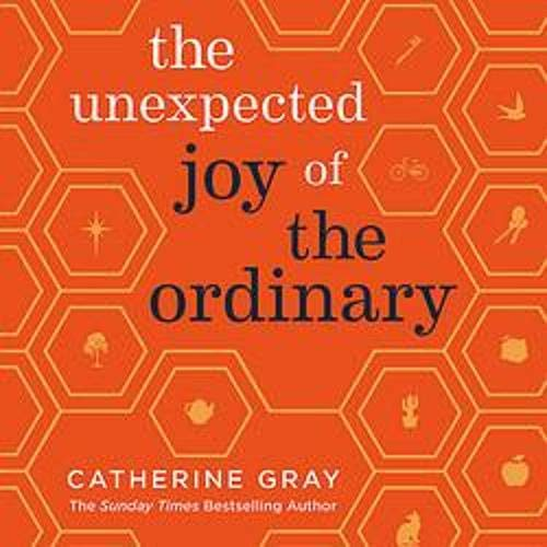 The Unexpected Joy of the Ordinary Audiobook By Catherine Gray cover art