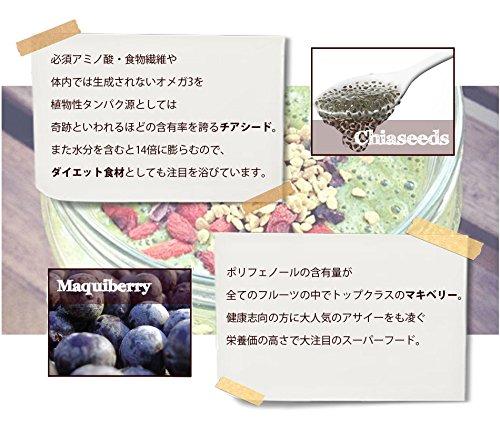 FRUVEGEチアシード配合スムージーたっぷり300g(約50食分)スーパーフードダイエット食品置き換えダイエットフルベジ(キウイグリーン)