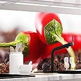 StickerProfis Küchenrückwand selbstklebend Pro HOT Chili 60 x 340cm DIY - Do It Yourself PVC Spritzschutz