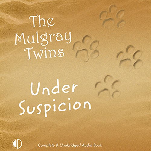 Under Suspicion cover art