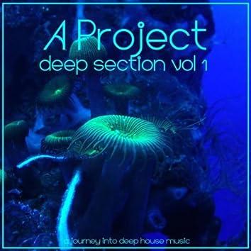 Deep Section , Vol1
