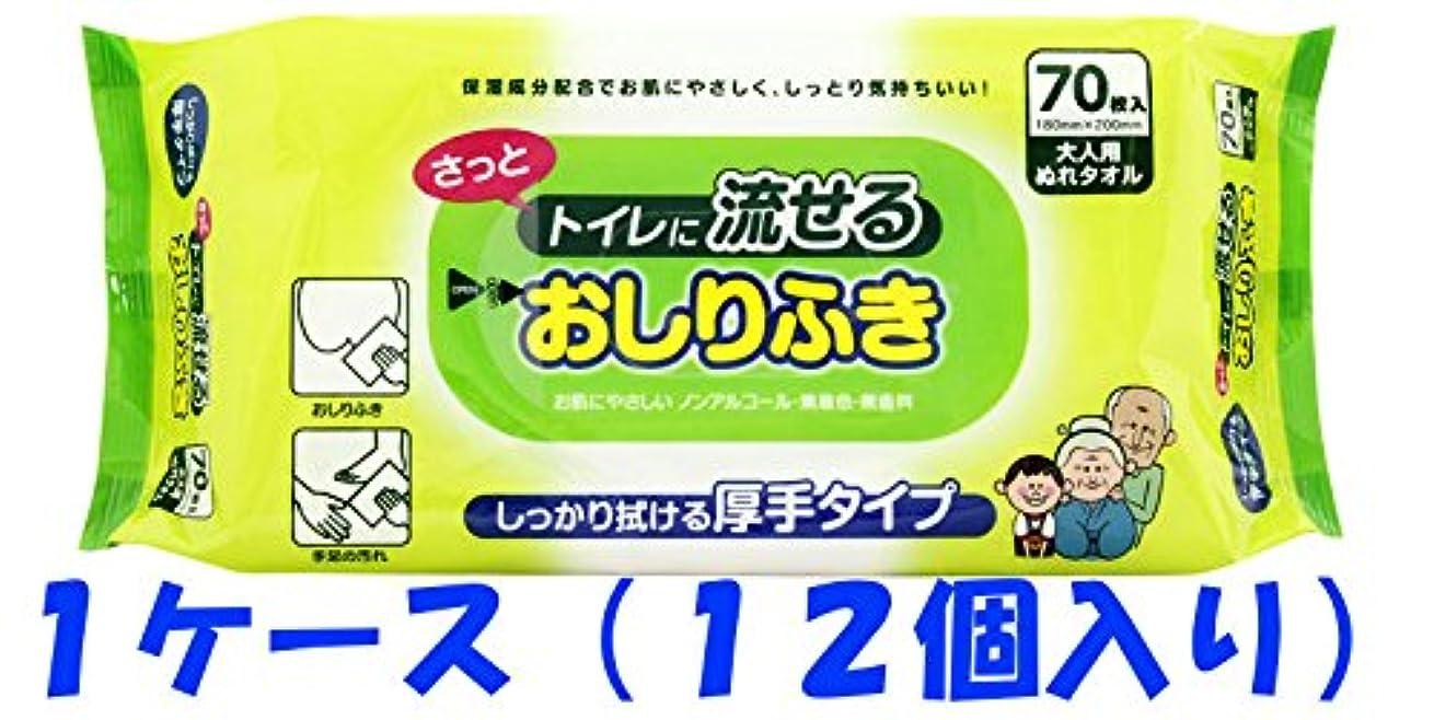 元の幾分発行【1ケース】流せるおしりふき大人用 70枚×12個