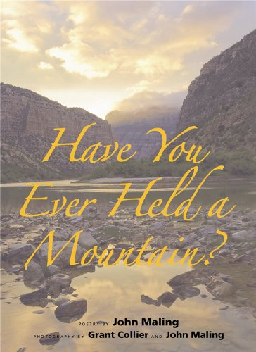 Have You Ever Held a Mountain?