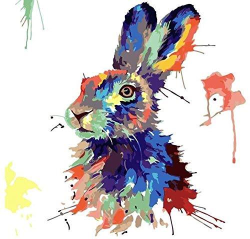 LKAZLL Pintura al óleo por número Kits DIY Adultos Lienzo Decoración del Hogar Regalos Únicos Conejo Abstracto 40x50 cm