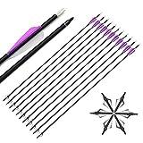 SHARROW 12pcs Flechas de Carbono 30 Pulgadas Spine 500 con Broadhead para Arco Compuesto Recurvo Flechas de Caza (Tipo 1)