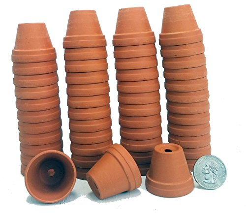50-1 3/8' Tiny Size Clay Pots - Great for Plants/Crafts/Fairy Gardens
