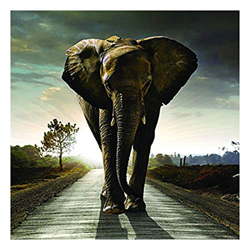 Glamour Girlz Up Close 3D-Geburtstagskarte mit dunkelstürmischem Elefanten-Motiv
