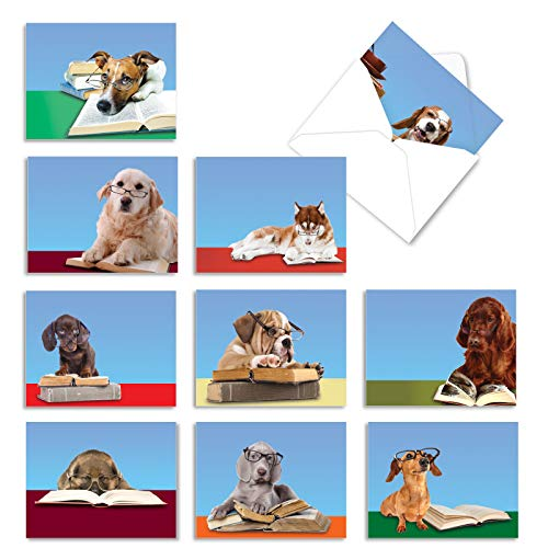 The Best Card Company - 10 Blank Dog Greeting Cards for All Occasions (4 x 5.12 Inch) - Reading Eye Dogs M3967