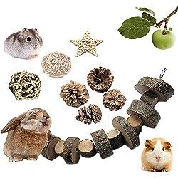 VCZONE Rabbit Chew Toys