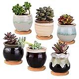 Wisolt 6 Piezas Macetas de Cerámica Esmaltadas para Cactus, Mini Macetas para Plantas Suculentas con Orificio de Drenaje para Decoración de Jardín