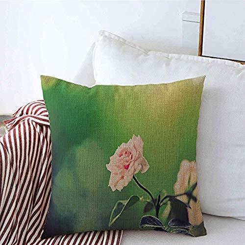 New-WWorld-Shop Kissenbezüge Gartenstamm Nahaufnahme Schöne Flora Rosa Rose Blumen Blühendes Geschenk Schönheit Blüte Texturen Werfen Kissenbezüge