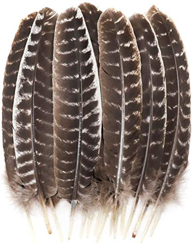 Outuxed 15pcs 10-12 Inches Natural Turkey Feathers for Crafts DIY Decoration Collection