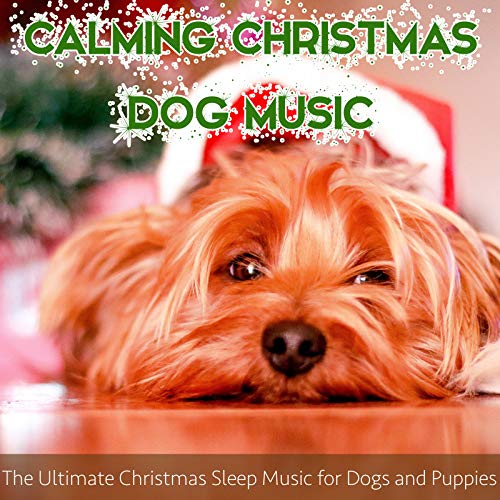 Calming Christmas Dog Music: The Ultimate Christmas Sleep Music for Dogs and Puppies