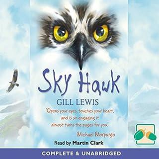 Sky Hawk cover art