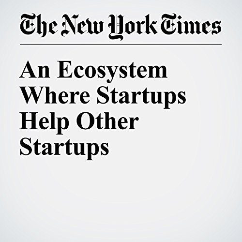 An Ecosystem Where Startups Help Other Startups audiobook cover art