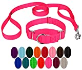 Country Brook Design - Martingale Heavyduty Nylon Dog Collar and Double Handle Leash - Hot Pink - Medium