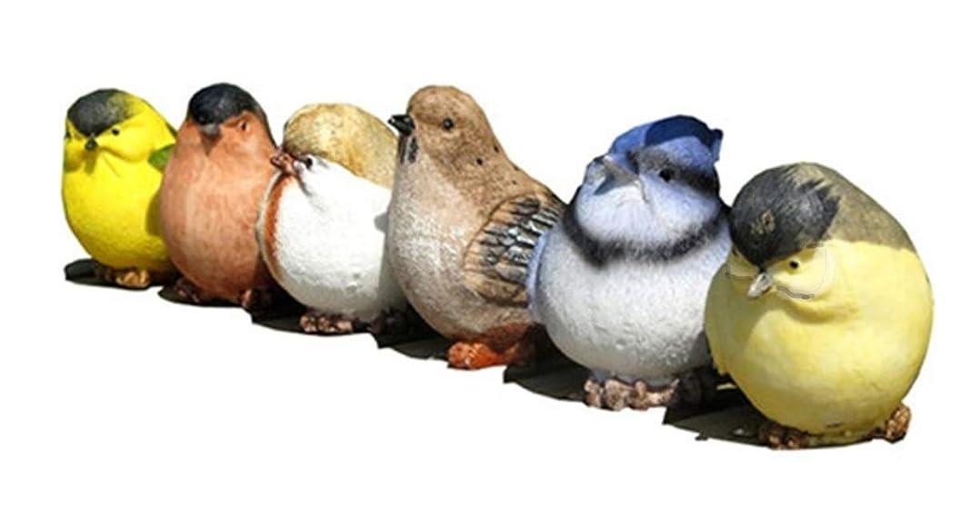 ライオン残高ペグ[S.fields.inc] 小鳥 カラフル 6個セット オーナメント 置物 ガーデニング オブジェ インコ 結婚式 贈り物
