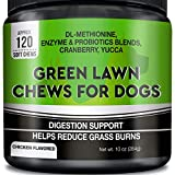 Best Dog Urine Neutralizers - GOODGROWLIES Grass Saver for Dogs - Dog Pee Review