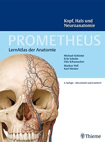 PROMETHEUS LernAtlas der Anatomie: Kopf, Hals und Neuroanatomie
