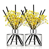 Cocodor Preserved Real Flower Reed Diffuser/Refreshing Air / 6.7oz(200ml) / 2 Pack/Reed Diffuser Set, Oil Diffuser & Reed Diffuser Sticks, Home Decor & Office