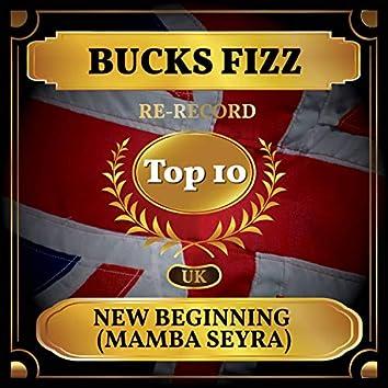 New Beginning (Mamba Seyra) (UK Chart Top 40 - No. 8)