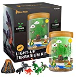 Light-up Dino World Terrarium Kit, 6 Dinosaur Toys with Colorful LED on Lid - STEM Educational DIY Science Kit - Create Your Own Customized Mini Dinosaur World - Best Gifts for Boys & Girls Kids Toy