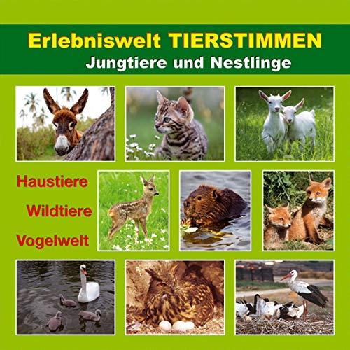 Erlebniswelt Tierstimmen Titelbild