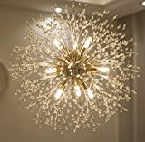 Garwarm Modern Firework Chandeliers,Crystal Chandelier Pendant Lighting,Ceiling Lights Fixtures for Living Room Bedroom Restaurant,9-Light,Gold