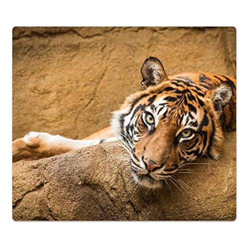 DekoGlas Herdabdeckplatte inkl. Noppen 'Hübscher Tiger', gehärtetes Glas, Herd Ceranfeld Abdeckung, einteilig universal 52x60 cm