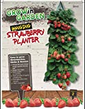 Hanging Strawberry Planter
