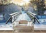 Desconocido Fotomural en Vinilo Impreso antiburbujas Puente nevado en Bosque Paisaje – Alta resolucion (250, 166)