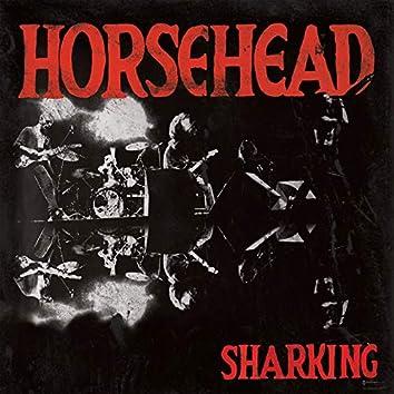 Sharking (Live)