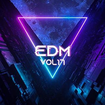 EDM, Vol.17