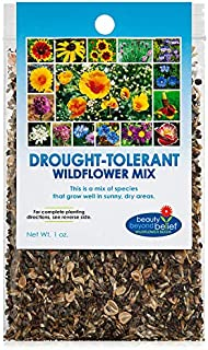 Drought Resistant Tolerant Wildflower Seeds Open-Pollinated Bulk Flower Seed Mix for Beautiful Perennial, Annual Garden Fl...
