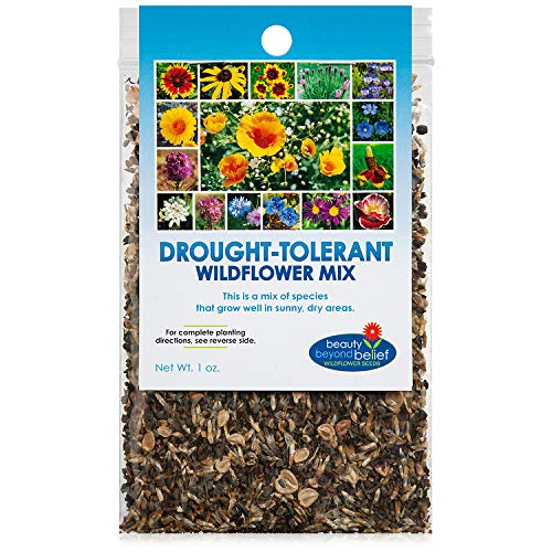 Drought Resistant Tolerant Wildflower Seeds Open-Pollinated Bulk Flower Seed Mix...
