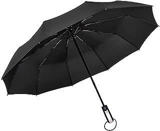 Travel Umbrella, 10 Ribs Finest Windproof Umbrella with Teflon Coating, Auto Open Close and Upgraded Comfort Handle