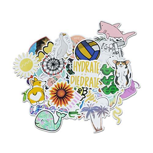 Vockvic Sticker Pack 50 PCS Carino alla Moda Impermeabile Adesivi per Bagagli, Laptop, Telefono, Auto, Skateboard, Biciclette, Moto, Chitarra, Casco (Type 1)