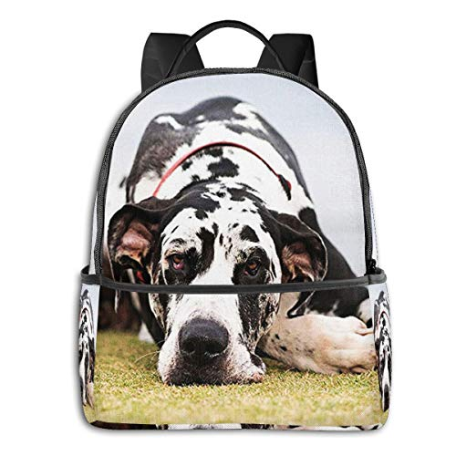 SGSKJ Mochila Tipo Casual Mochila Escolares Mochilas Escolar Estilo Impermeable para Viaje De Ordenador Portátil para Hombre Mujer Perro Gran danés