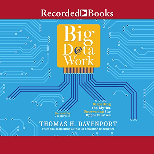 Big Data at Work Audiobook By Thomas H. Davenport cover art