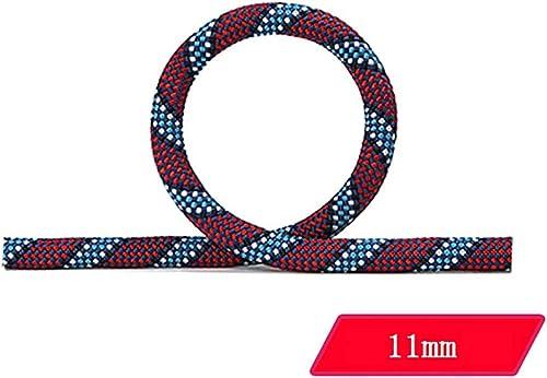 LIZIPYS Cordes Corde d'escalade Corde d'alimentation extérieure Corde de sécurité Haute Prougeection Contre Les Chutes de 11 mm de diamètre, Violet