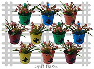 Royal Basket Round Dotted Butterfly Railing Planters (Multicolour, Pack of 10)