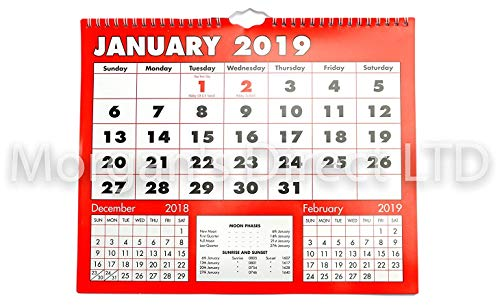 Calendario 2019 para colgar en la pared, tamaño grande, acabado brillante de...